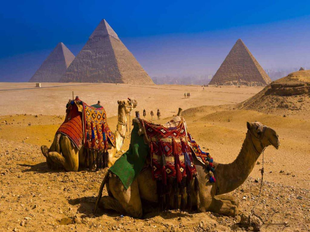 Cairo Pyramids Day Tour and Nile Cruise Lunch from Port Said