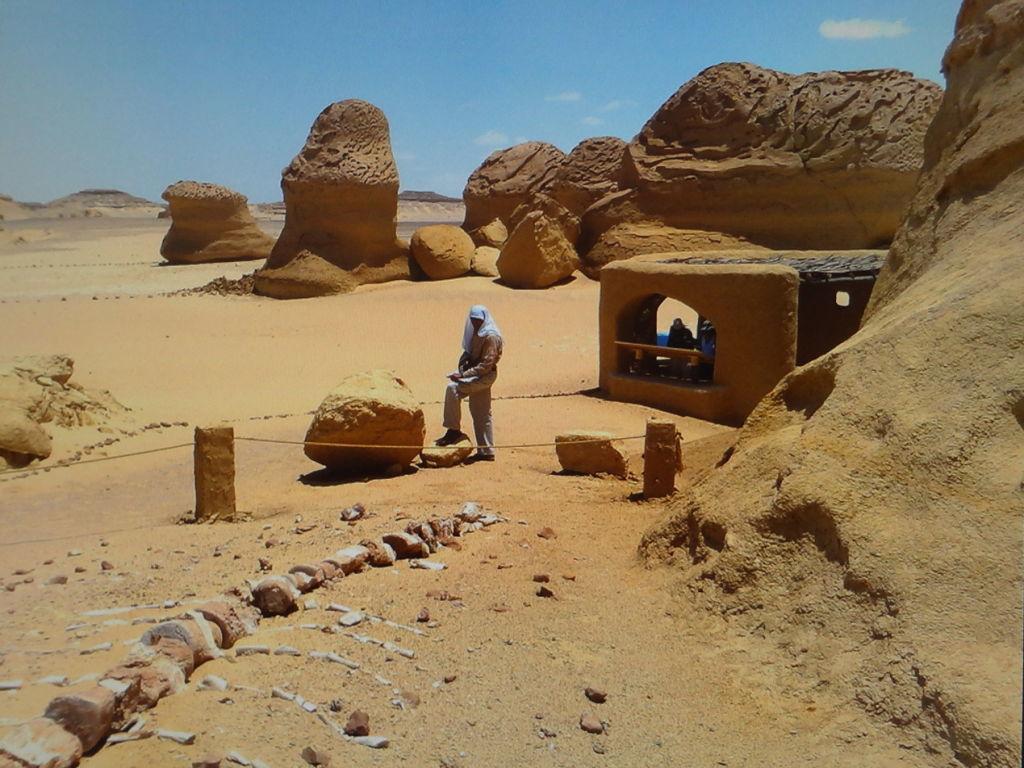Private Overnight Trip: to Fayoum Natural Lakes - Wadi Hitan &Wadi El Rayyan