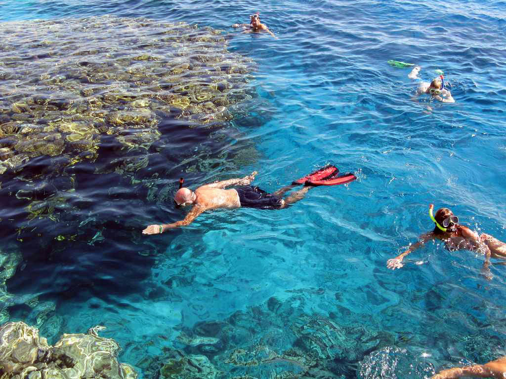 Day Trip Snorkeling At Port Ghalib Marina from Marsa Alam
