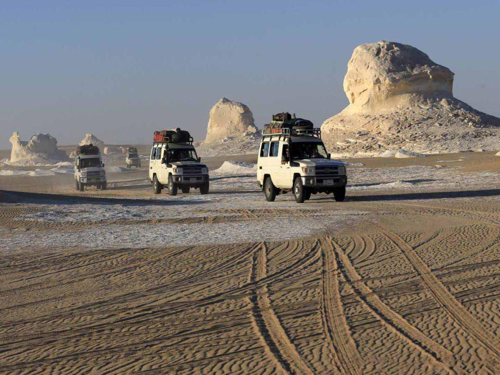 Giza Pyramids, Nile Cruise & Oasis adventure
