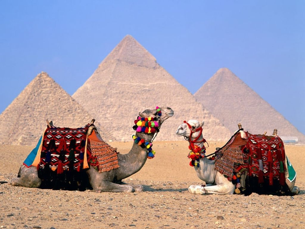 Private 10 Days: Cairo, Luxor, Aswan Nile cruise & Hurghada
