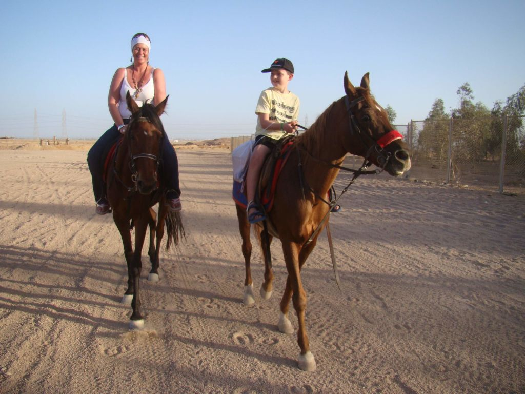 Horse Or Camel Raide at Sunset Time luxor