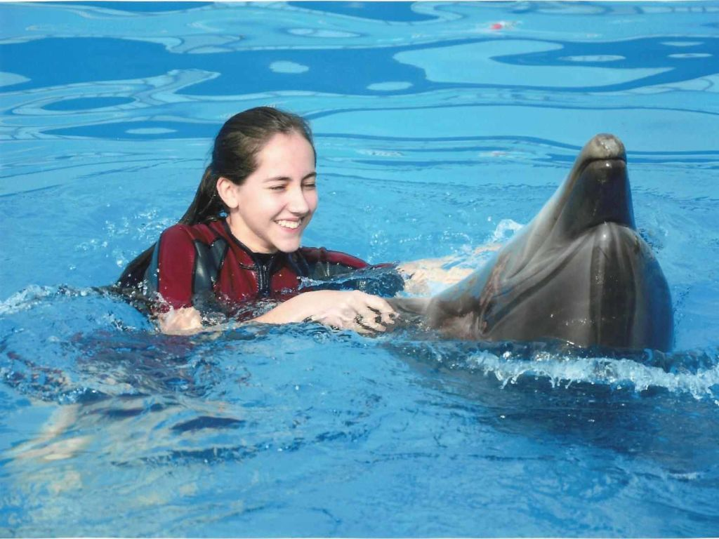 Dolphin Full Day Snorkeling Tour From Hurghada